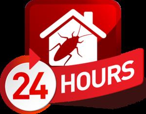 24 Hour Exterminator Bay Minette, Alabama