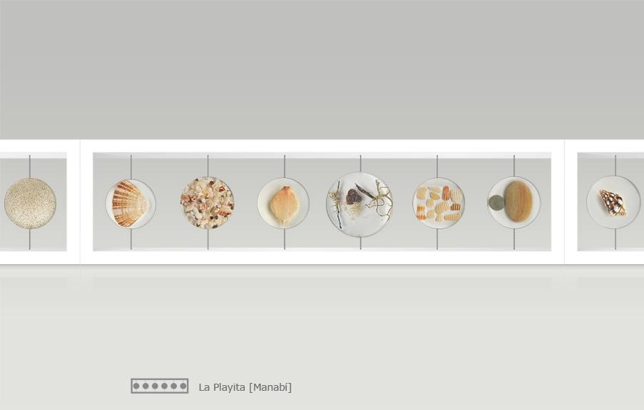 Caminatas / (2014 / madera, resina, objetos / 6 piezas: 15 x 54 x 10 cm 8 piezas: 15 x 71 x 10 cm