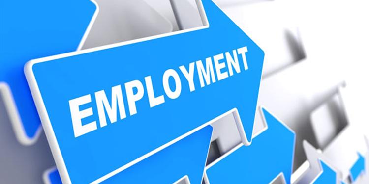 Economy Watch: Economy Creates 227K Jobs in January