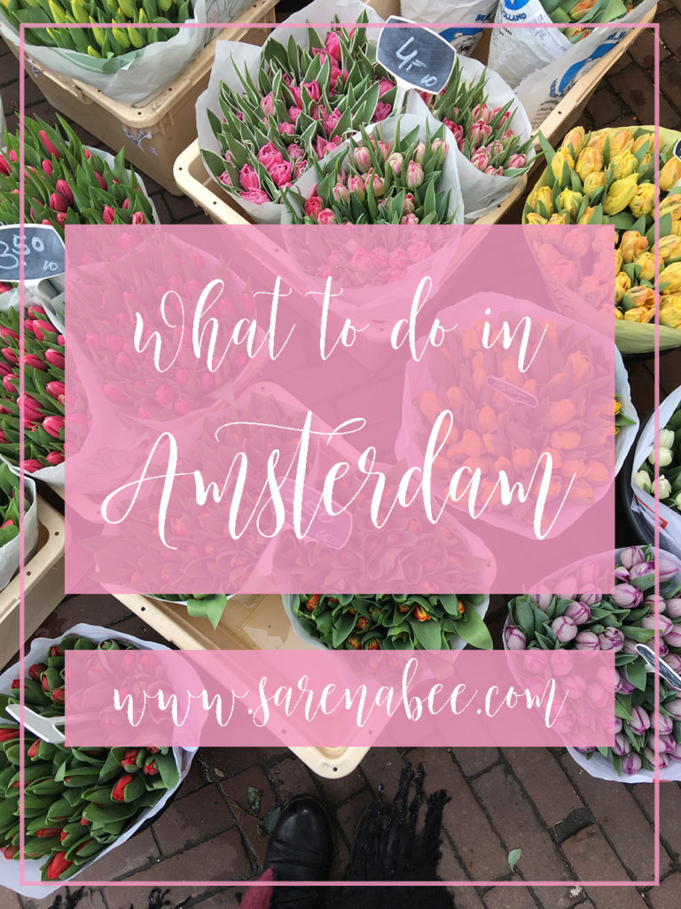 What To Do In Amsterdam Sarenabee Travels
