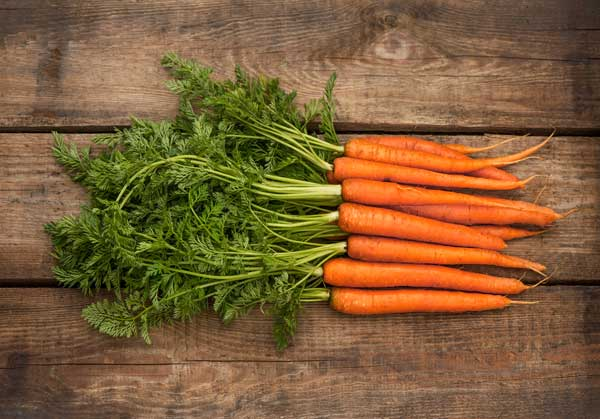 4 Yummy Vegetables You Can Grow This Fall