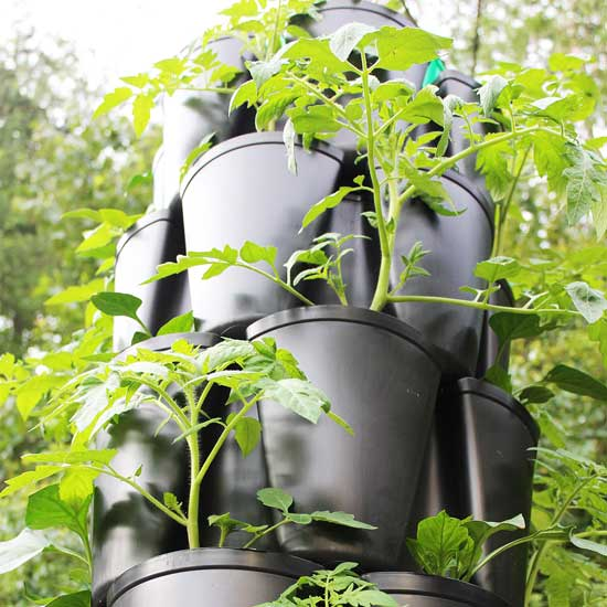 Starting a GreenStalk Garden – Step by Step