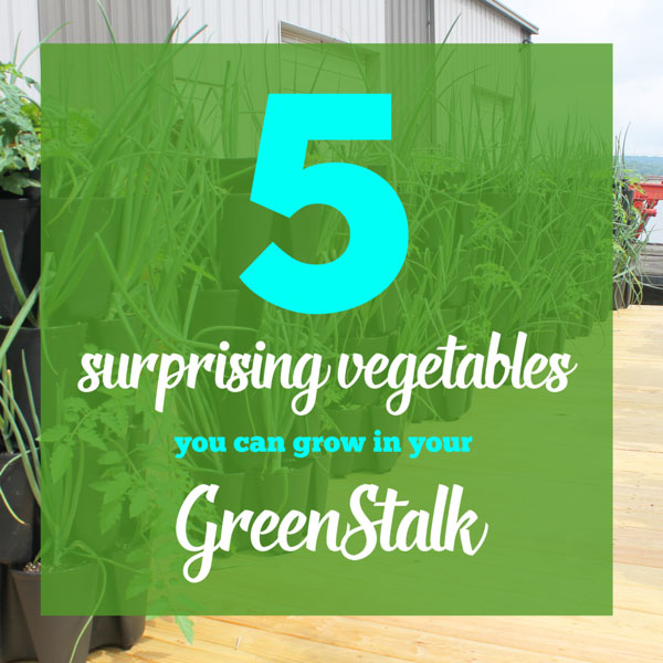 5 Surprising Vegetables That You Can Grow in a GreenStalk