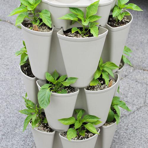 The Benefits Of Container Gardening Greenstalk Vertical Garden