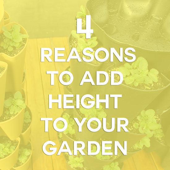 Benefits of Gardening Vertically