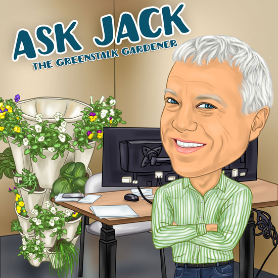 Ask Jack: What Kind of Soil Should I Use in My GreenStalk?