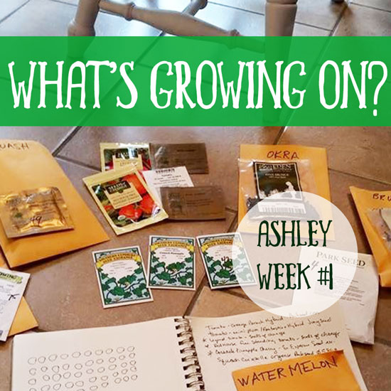 What's Growing On? Ashley Week #1