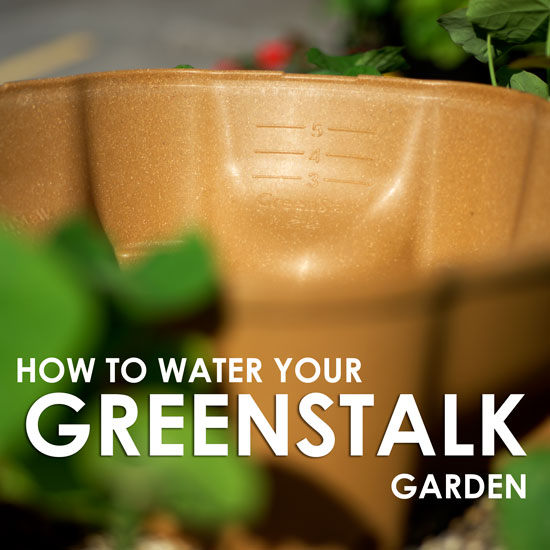 New Fill-To Lines (And How to Water Your GreenStalk)