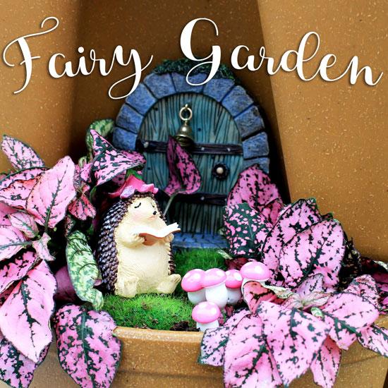 How To: A Vertical Fairy Garden
