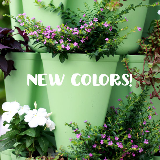 Introducing New Color Options