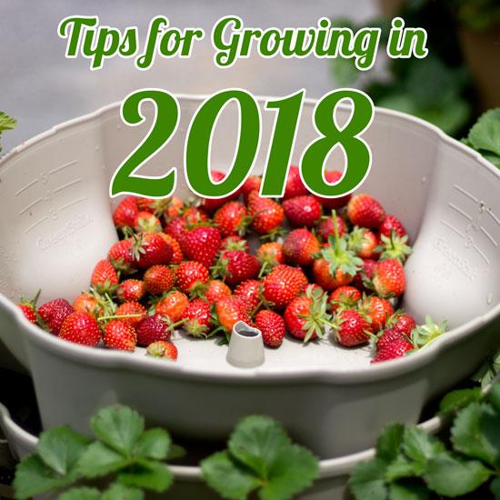 5 Tips for Gardening in 2018