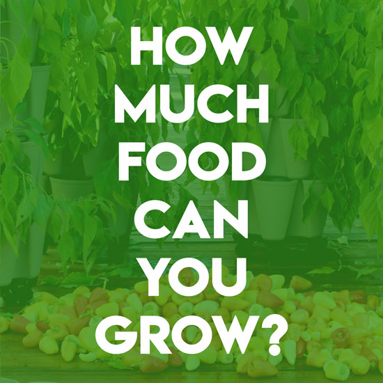 How Much Food Can You Grow in a GreenStalk Vertical Garden?
