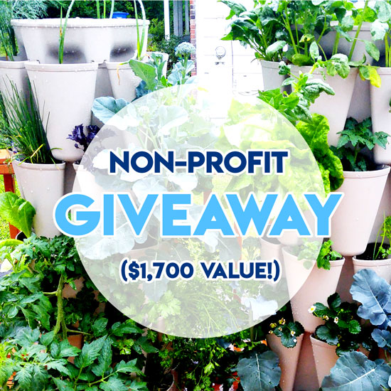 All About Our Non-Profit Giveaway!