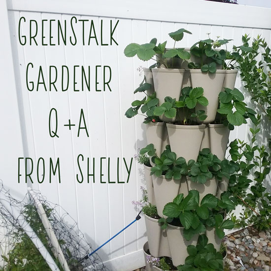 GreenStalk Gardener Q+A from Shelly