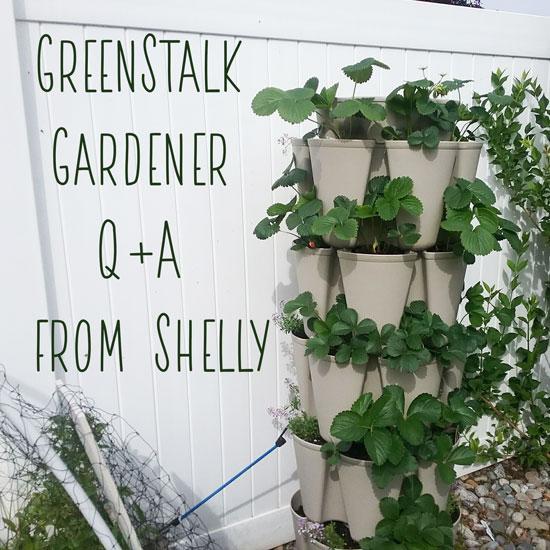GreenStalk Gardener Q+A from Shelly