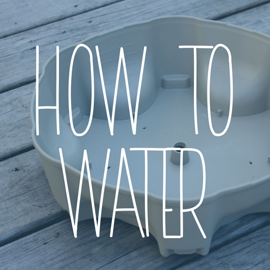 How to Water Your GreenStalk Vertical Planter – FAQ's