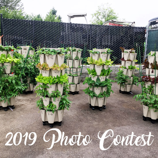 2019 GreenStalk Photo Contest Winners