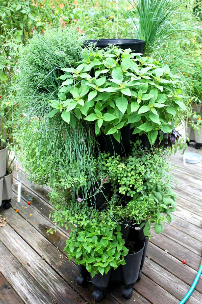 Community Greenstalk Vertical Garden