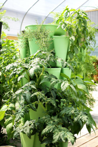 Green GreenStalk Vertical Planter