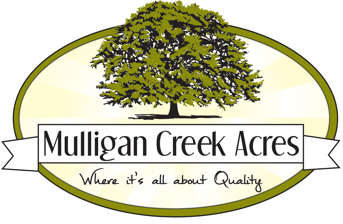 Mulligan Creek Acres