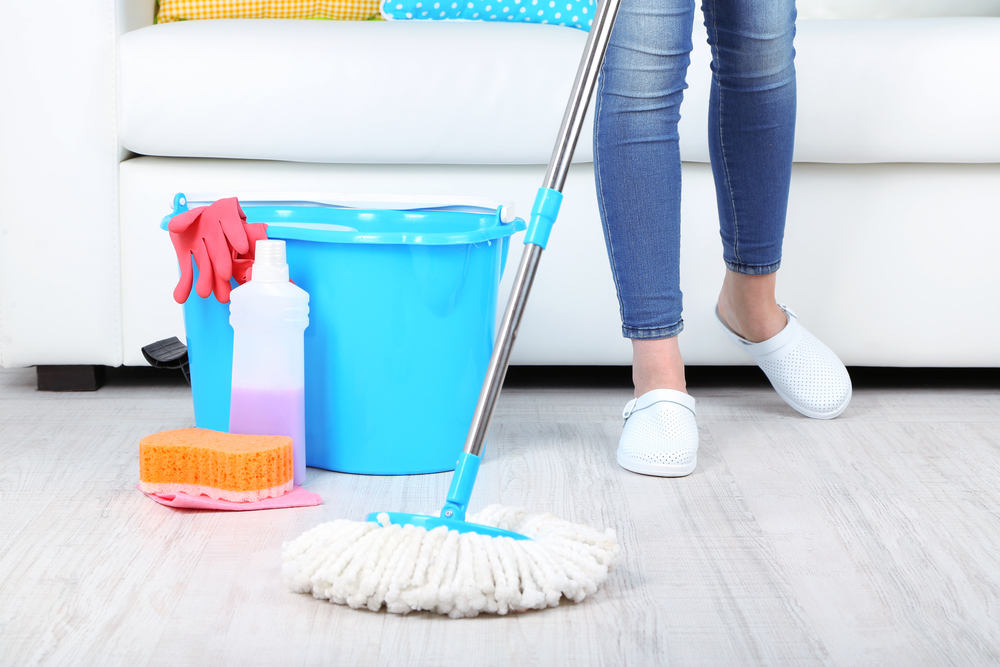 Apartment Cleaning in Portland