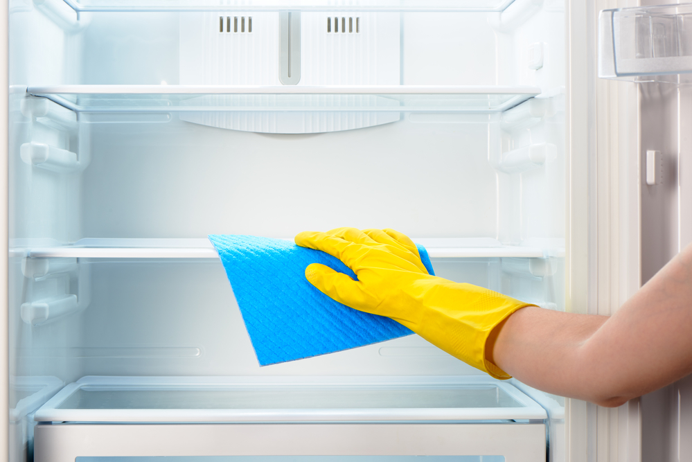 Fridge Cleaning Services