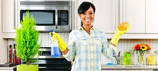professional cleaning clean arricvl llc