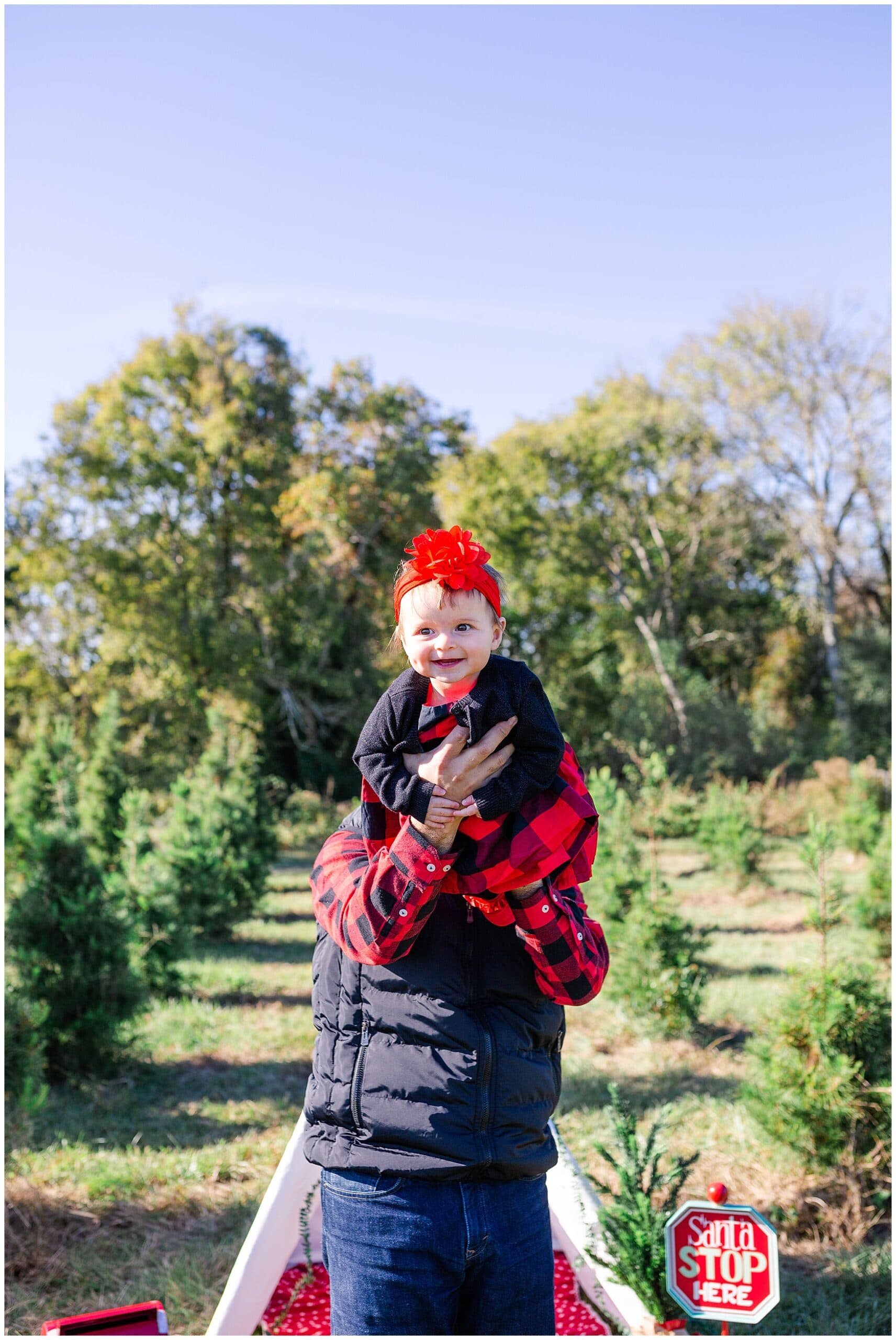 baby laughing at Christmas tree farm for family portraits by Swish and Click Photography at Holiday Acres Farm in Manvel Texas