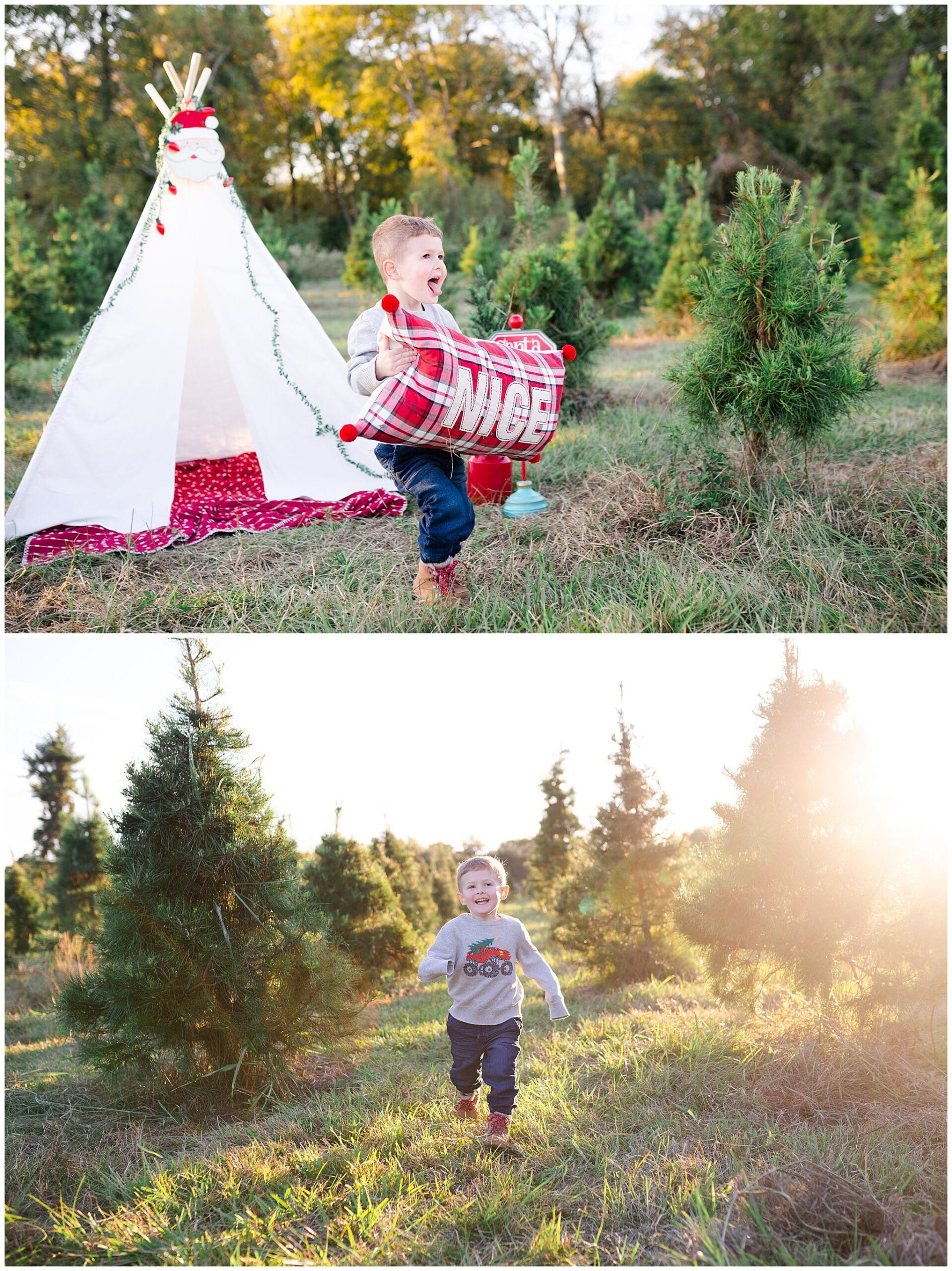 young boy at Christmas tree farm for family portraits by Swish and Click Photography at Holiday Acres Farm in Manvel Texas