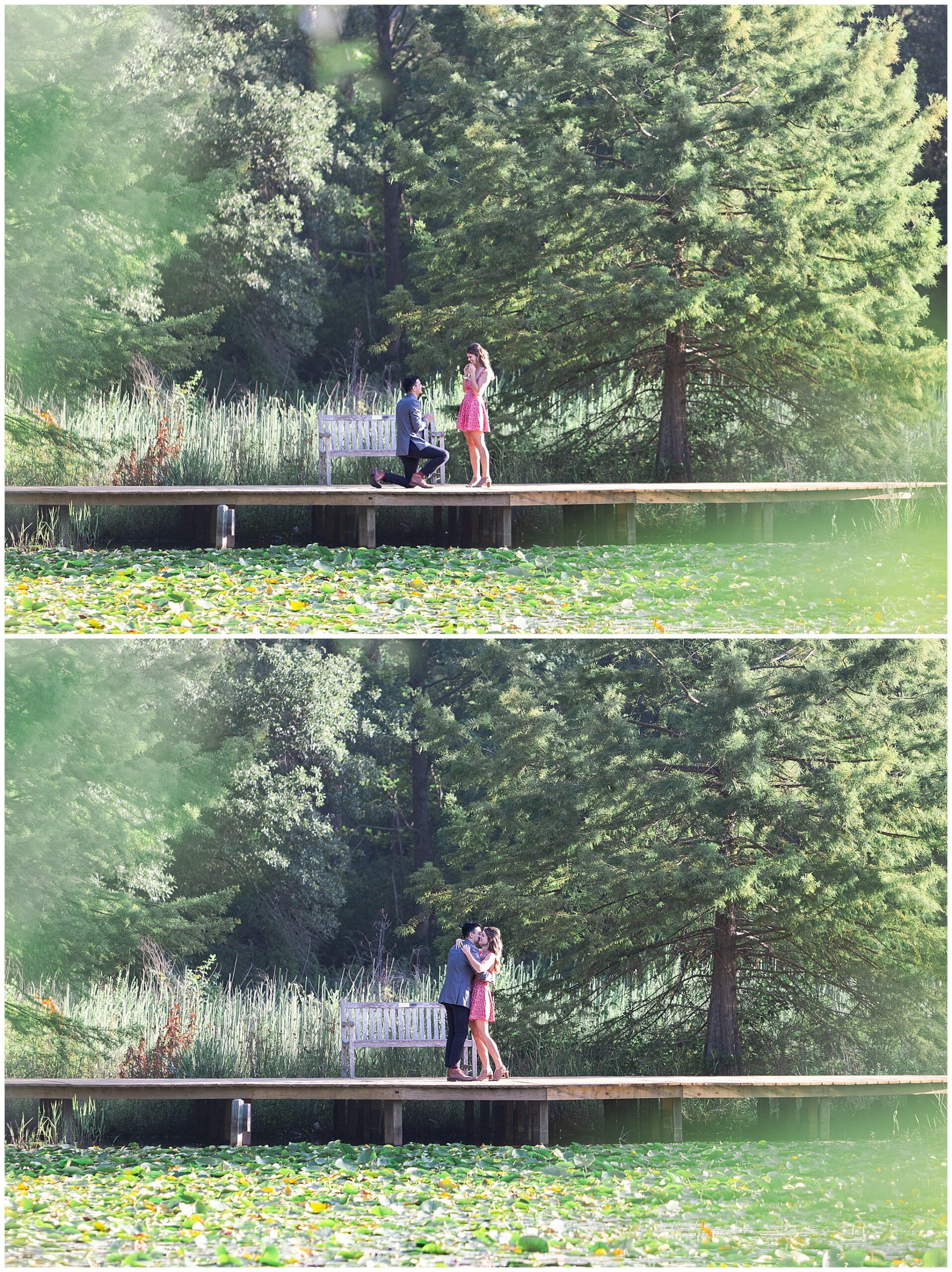 man proposing to woman at Houston Arboretum by Swish and Click Photography