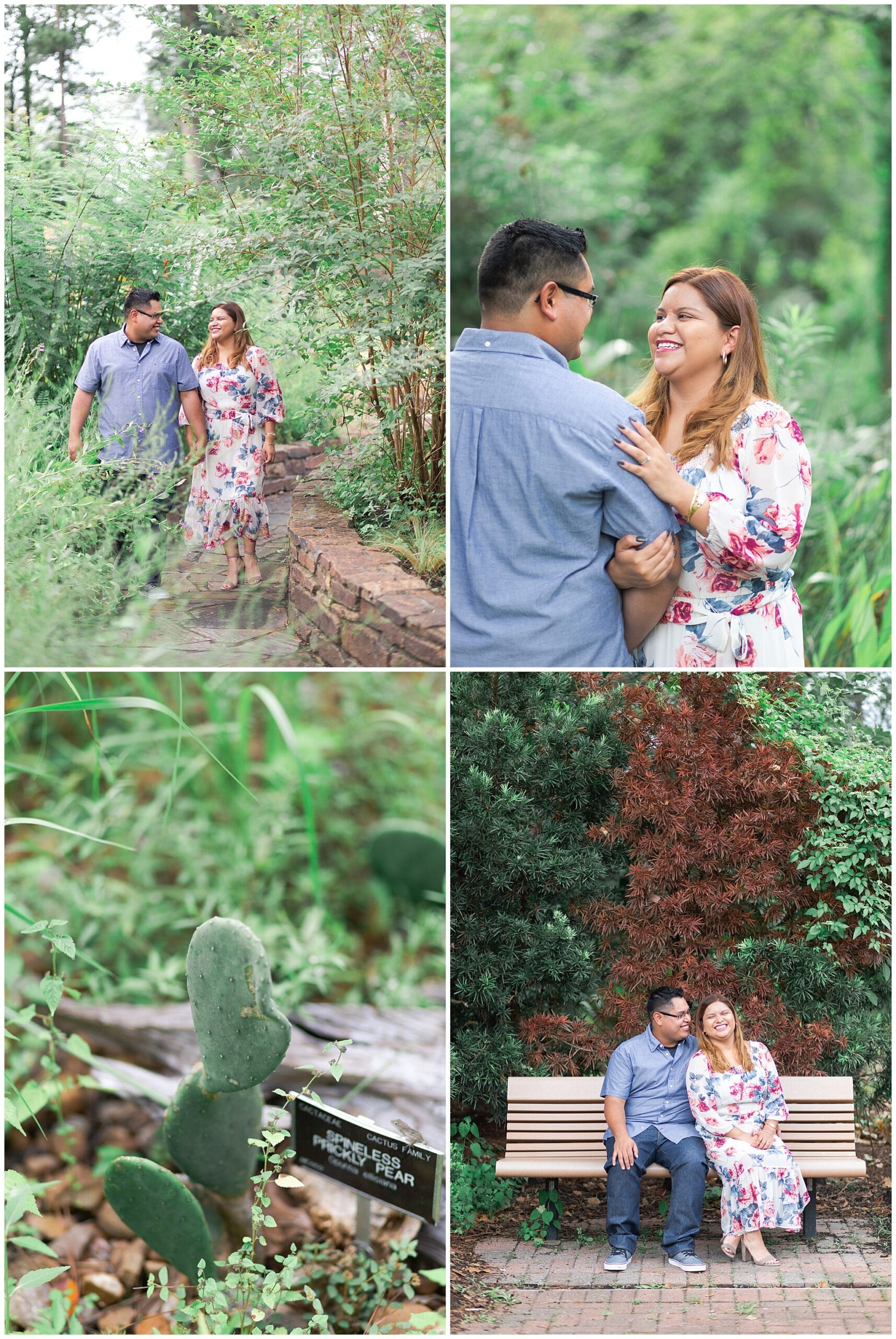 engaged couple kissing at Mercer Botanic Gardens in Houston TX by Swish and Click Photography