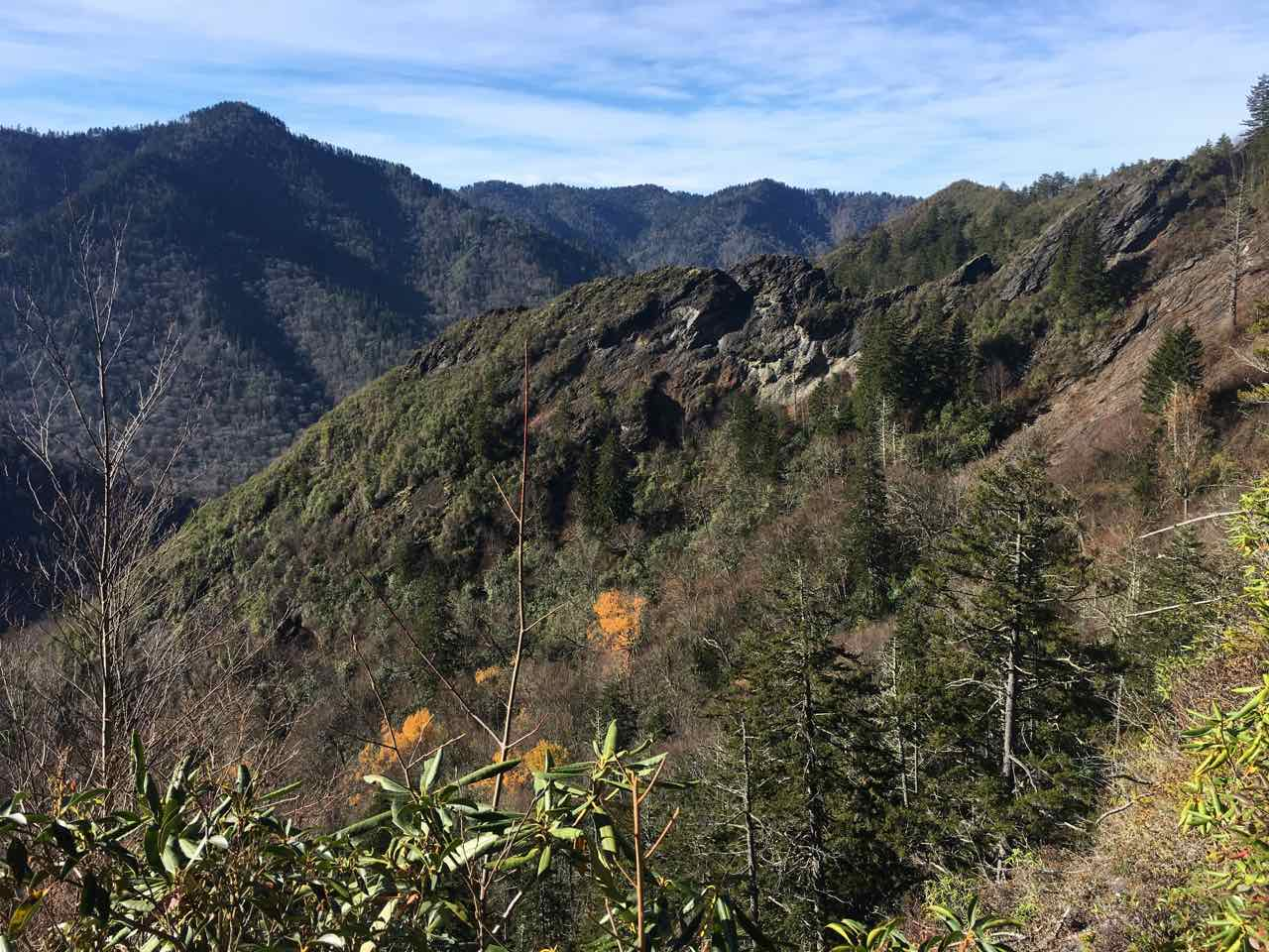 Mt. LeConte, 2017