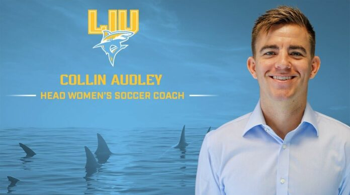 Audley, Collin Audley, Long Island University