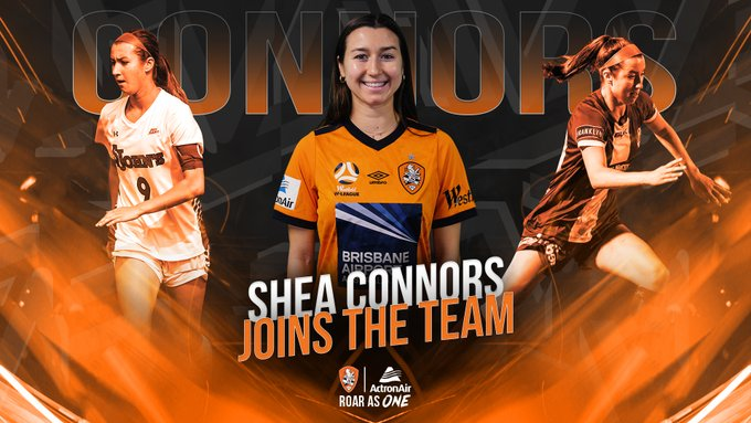 connors, shea connors