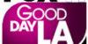 GoodDayLA_Fox
