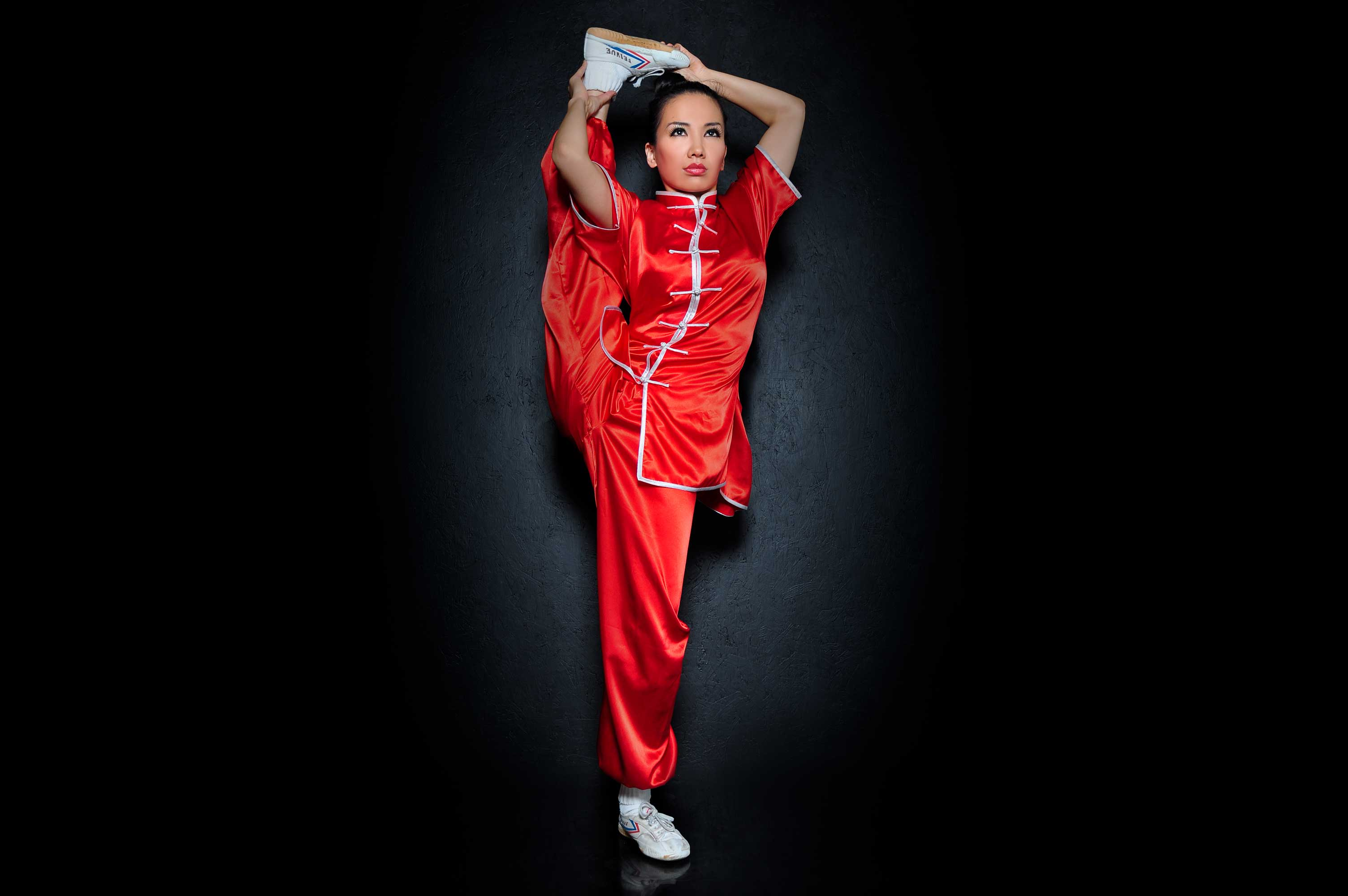 Multi-Skilled Martial Artist