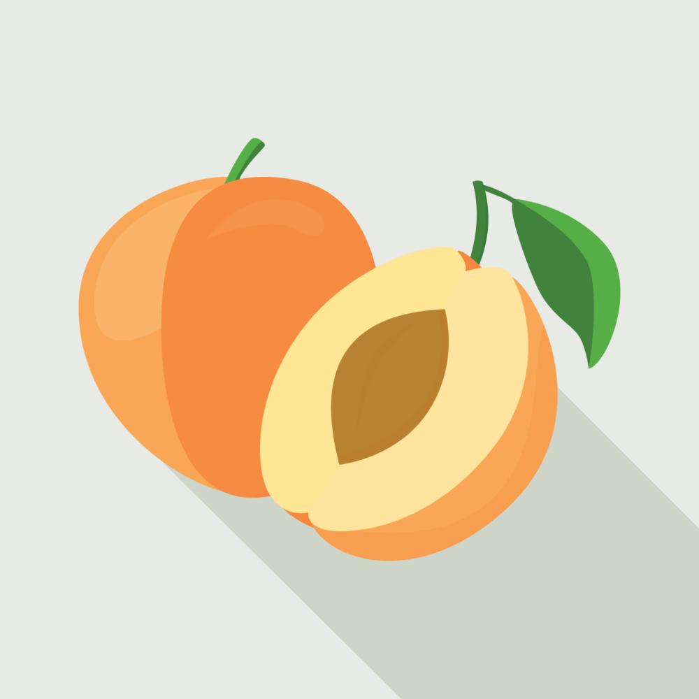 jason-b-graham-apricot-icon-0003-featured-image