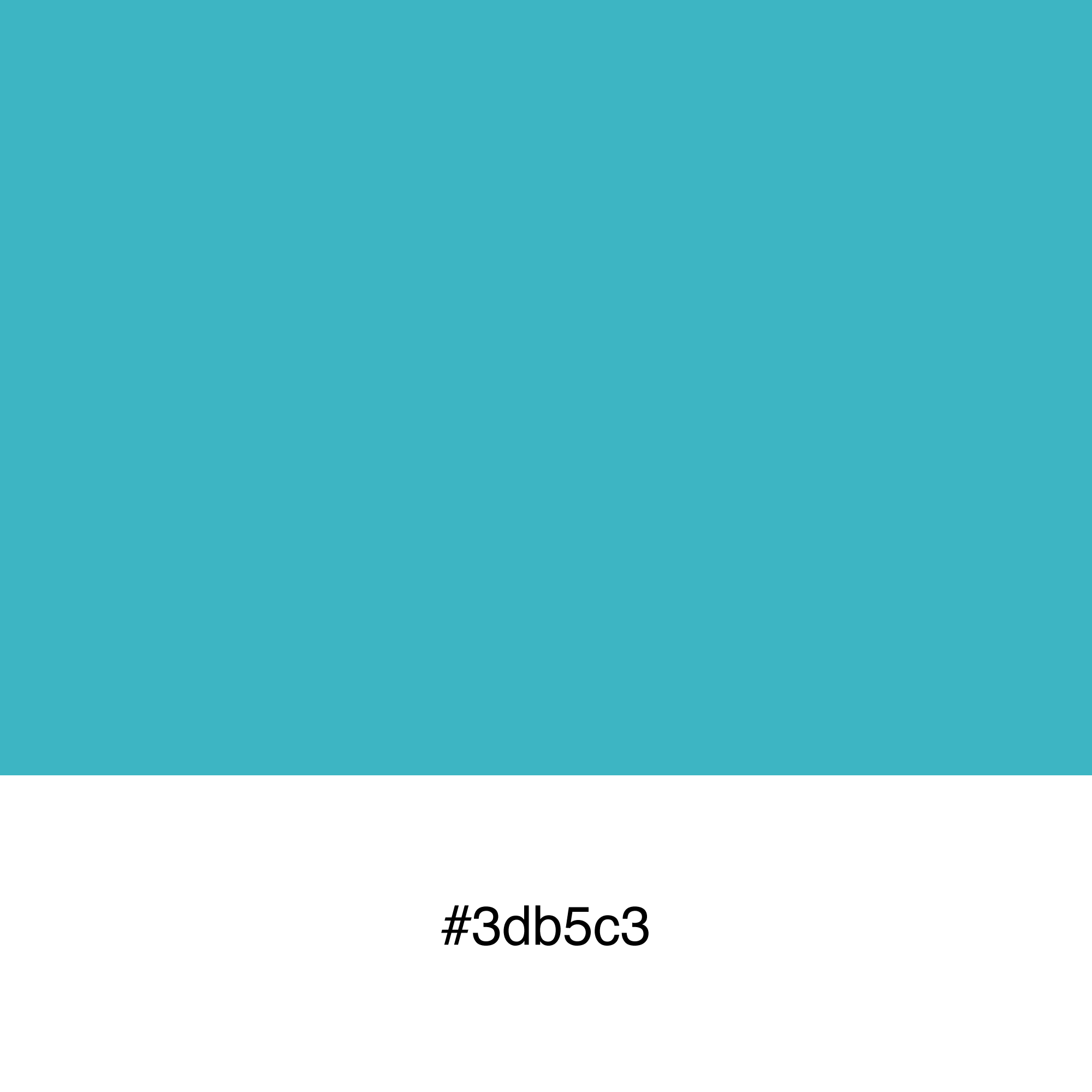 color-swatch-3db5c3