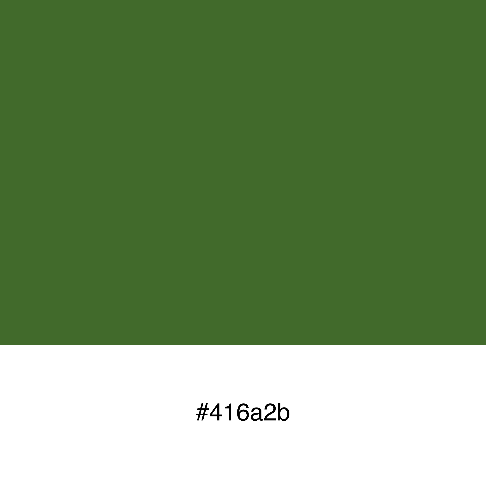 color-swatch-416a2b