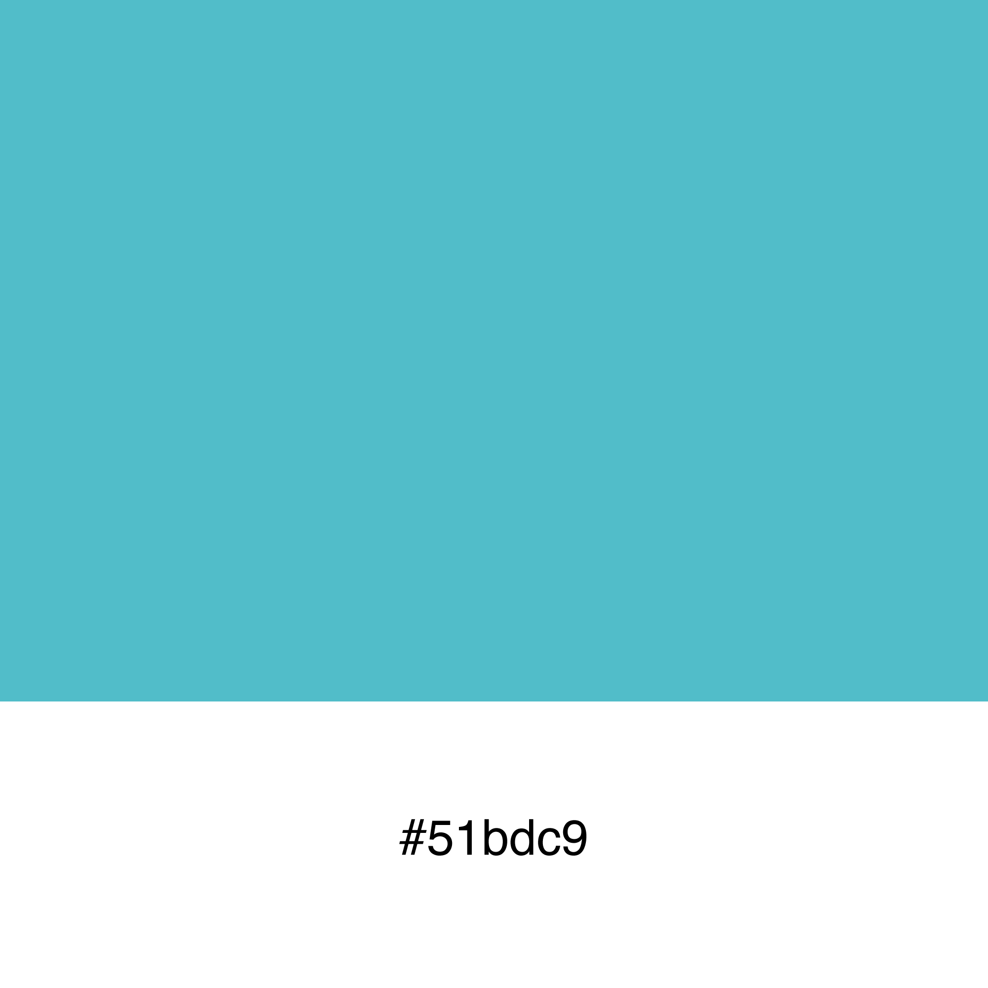 color-swatch-51bdc9