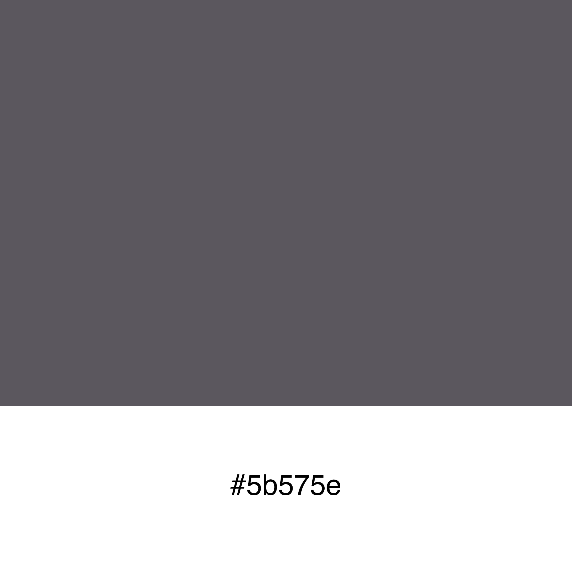 color-swatch-5b575e