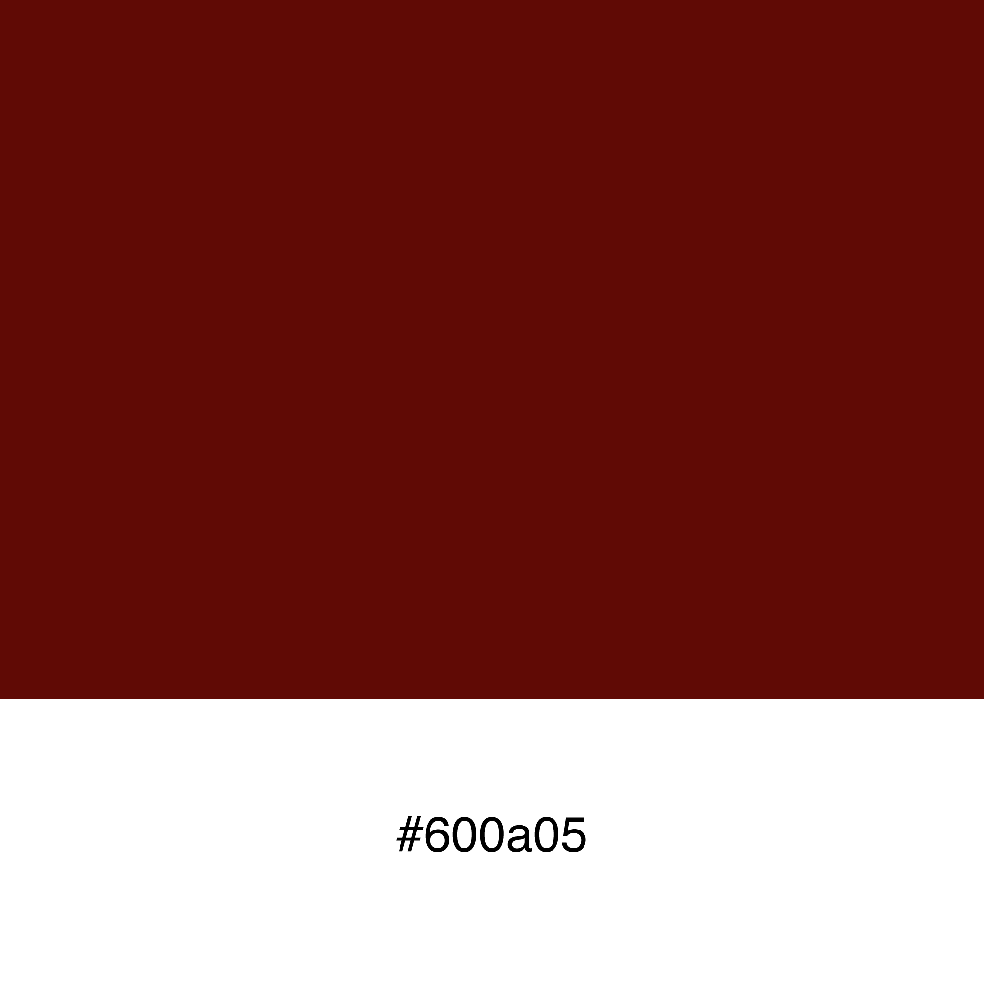 color-swatch-600a05