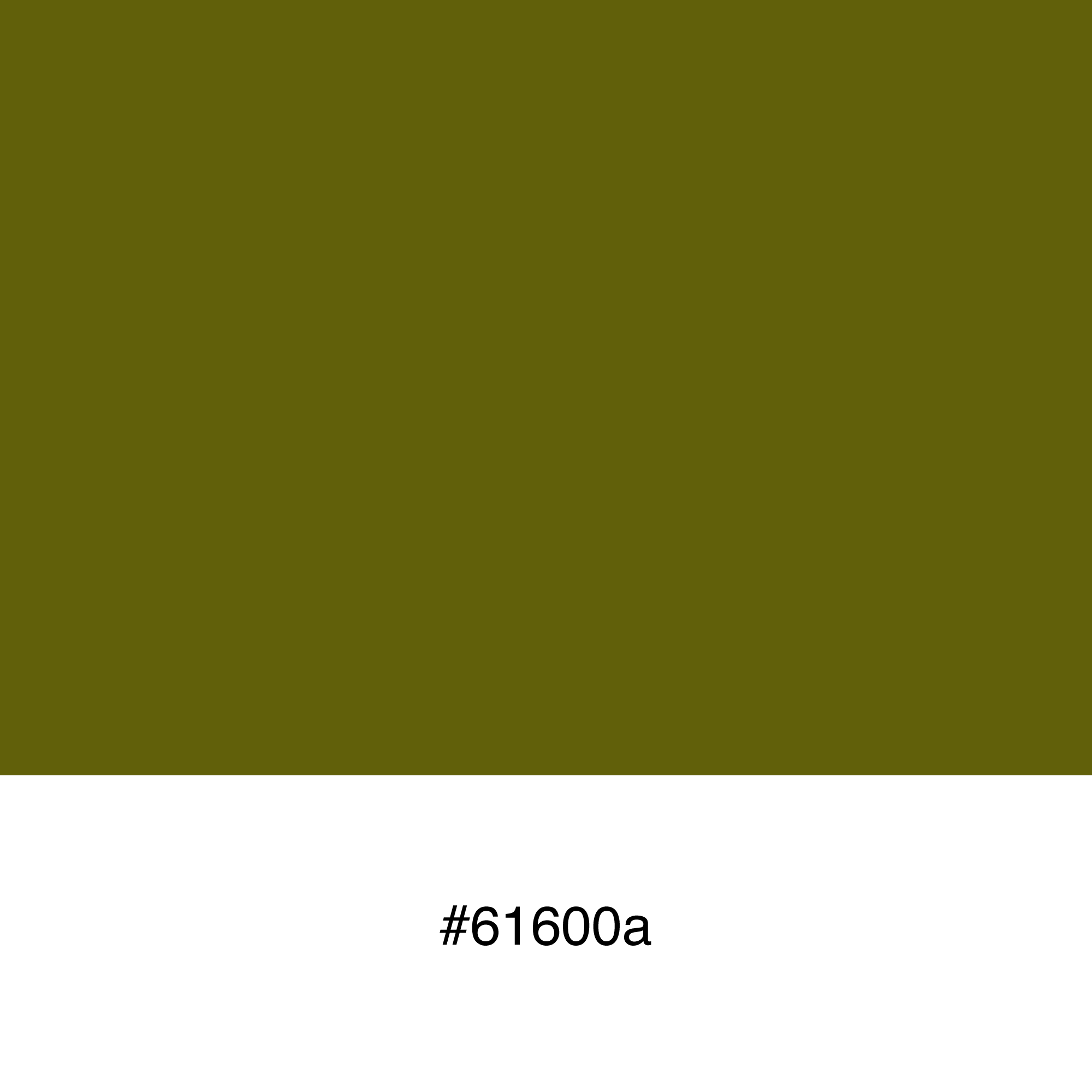 color-swatch-61600a
