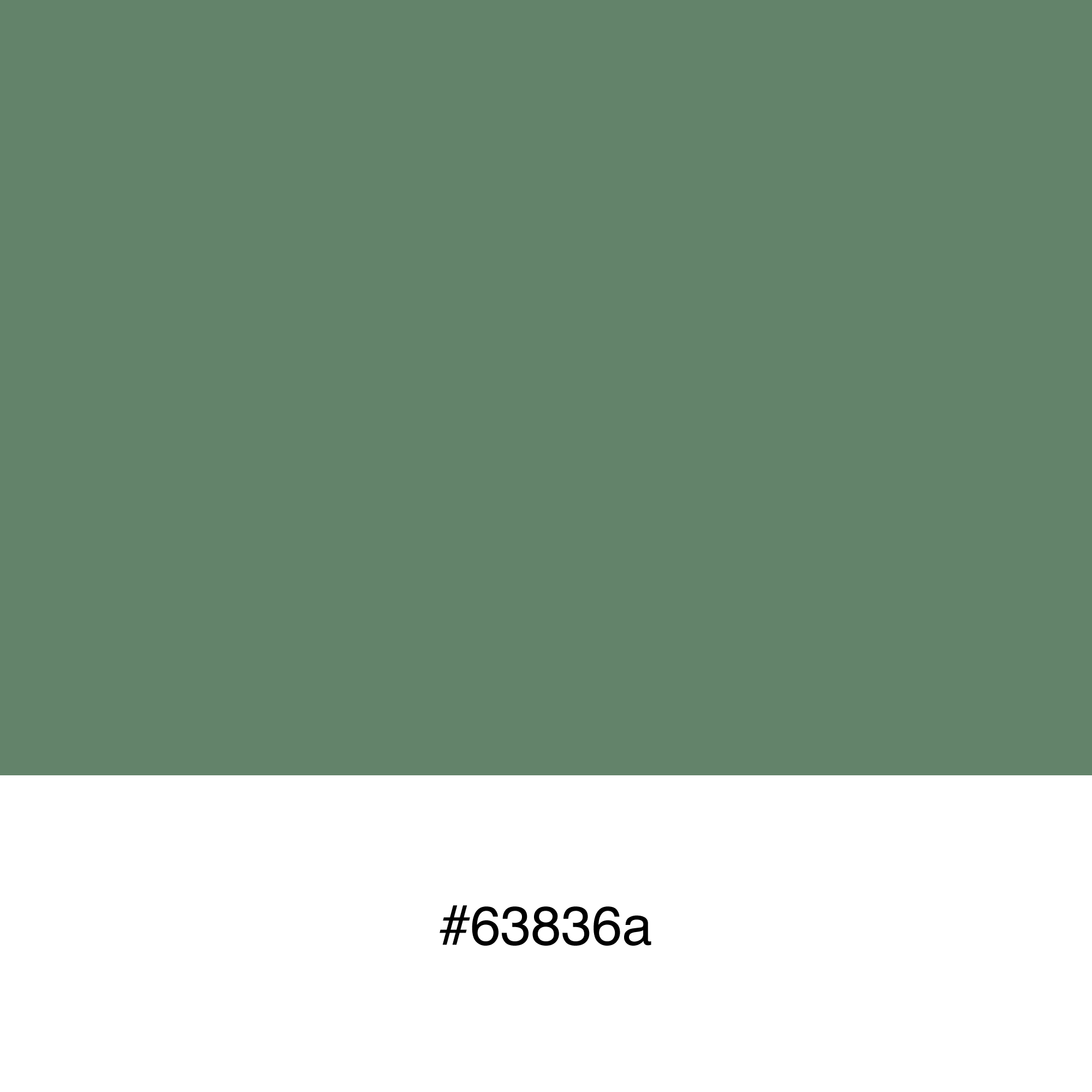 color-swatch-63836a