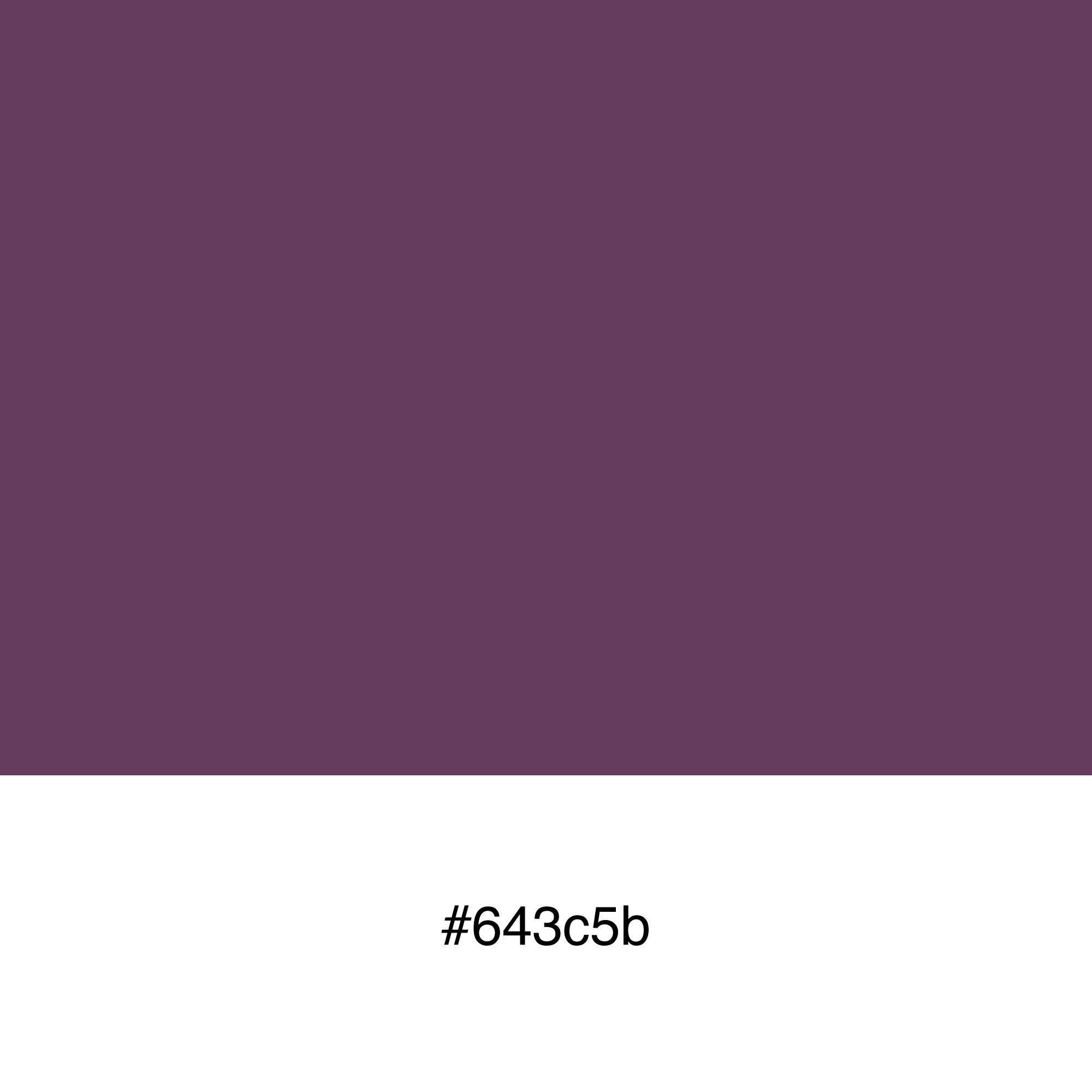 color-swatch-643c5b