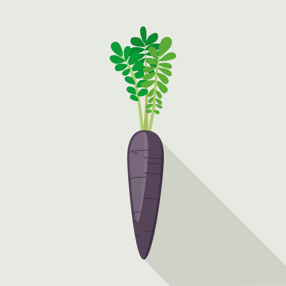 jason-b-graham-carrot-icon-564459-featured-image