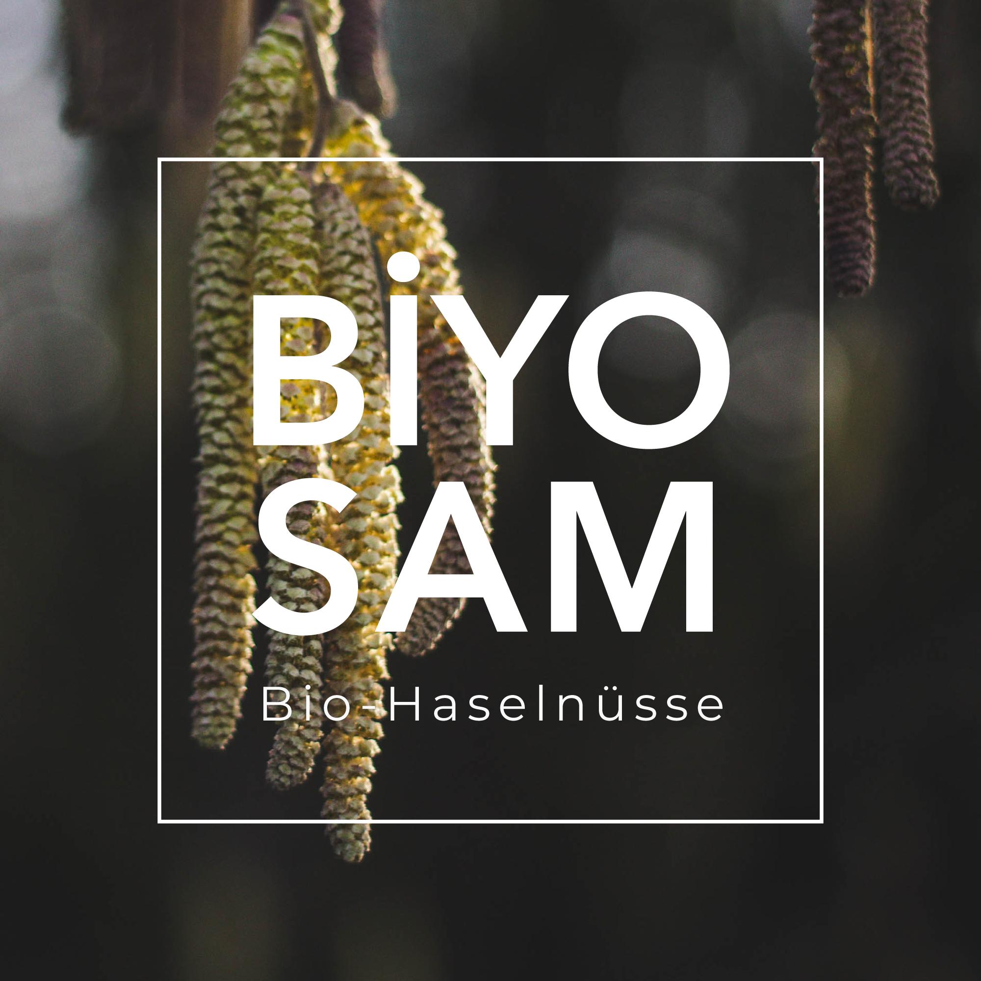 jason-b-graham-biyosam-c99e10