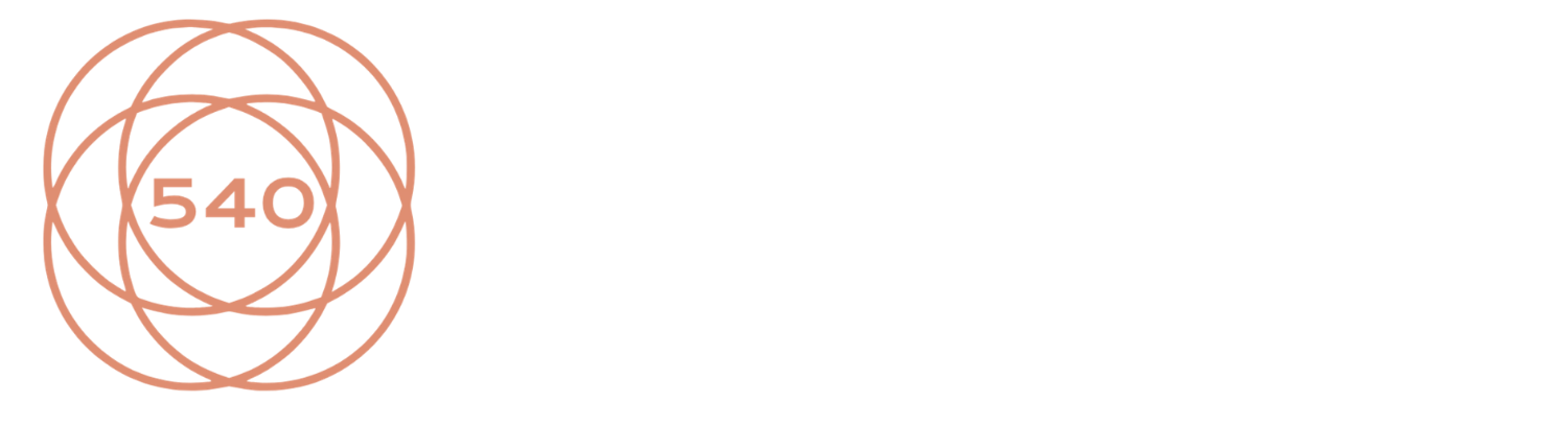 Welcome to 540 Strategies