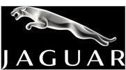 Jaguar_Logo_White
