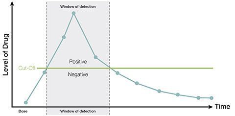 drug testing window of detection